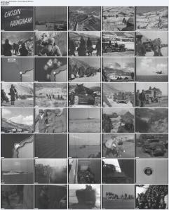 US Marineinfanterie im Koreakrieg