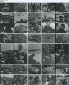Doku US-Marines 1965
