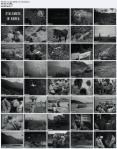 Koreakrieg 1951